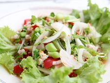 Free Spicy Salad Royalty Free Stock Photo - 24058265