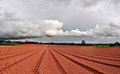 Free Cloud And Ploughed Royalty Free Stock Photos - 24060658