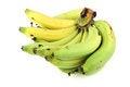 Free Banana Royalty Free Stock Photography - 24077677