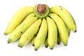 Free Banana Royalty Free Stock Image - 24077706
