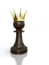 Free Black Pawn King. Royalty Free Stock Photos - 24079658