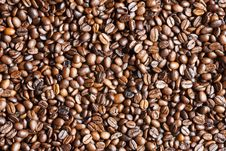 Free Coffee Beans As Background Texture Royalty Free Stock Images - 24078349