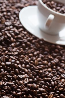 Coffee Beans With A Coffee Cup Royalty Free Stock Image