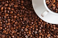 Coffee Beans With A Cup Filled With Coffee Beans Stock Photography