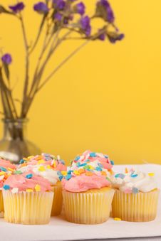 Free Pastel Colored Cupcakes Royalty Free Stock Photography - 24082807