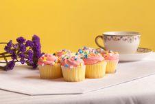 Free Pastel Colored Cupcakes Stock Photos - 24082813