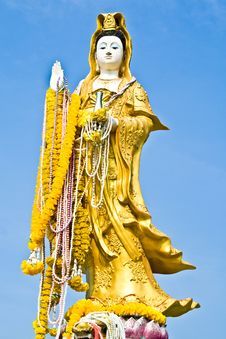 Free Gold Kwan Yin On Blue Sky Royalty Free Stock Photography - 24083817