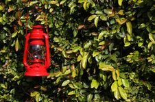 Free Lantern Stock Photography - 24083882