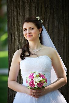 Free Happy Bride With Bouquet In Wedding Walk Stock Images - 24085064