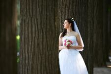Free Happy Bride With Bouquet In Wedding Walk Royalty Free Stock Photography - 24085107