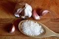 Free Garlic And Salt Royalty Free Stock Image - 24093306