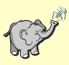 Free Elephant Royalty Free Stock Photos - 24094038