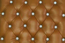 Free Texture Of Brown Skin Stock Photos - 24097333