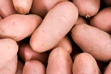 Free Potatoes_02 Stock Images - 2411774