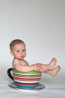 Free A Cup Of Baby Stock Image - 2412521