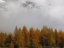 Free Alps In Fall Royalty Free Stock Photo - 2413205