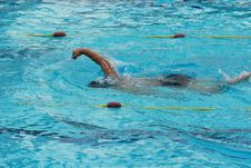 Free Swimming Competition Royalty Free Stock Photos - 2414808