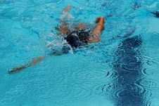 Free Swimming Competition Stock Image - 2415781