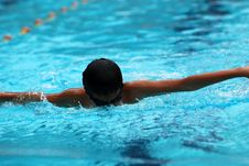 Free Swimming Competition Stock Photography - 2415782