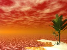 Free Beautiful Tropical Scene Stock Photos - 2417223