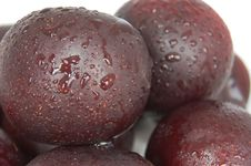 Deep Colour Plums Royalty Free Stock Image