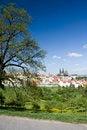 Free Prague Castle Panorama Stock Images - 24101004
