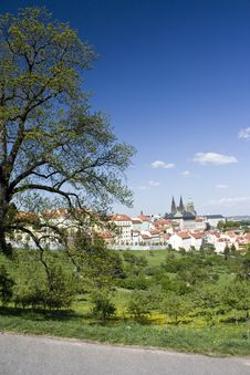 Free Prague Castle Panorama Stock Images - 24101004