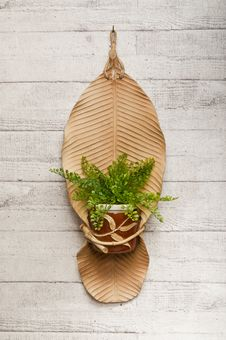 Free Pottery Banana Leaf With Flowerpot Isolated On Wo Royalty Free Stock Images - 24101049