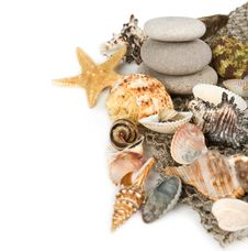 Cockleshells,marine Stones And Starfish Stock Photos