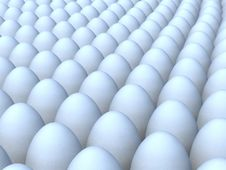 Free Group Of White Eggs Royalty Free Stock Images - 24104539