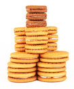 Free Cookies Royalty Free Stock Image - 24116276