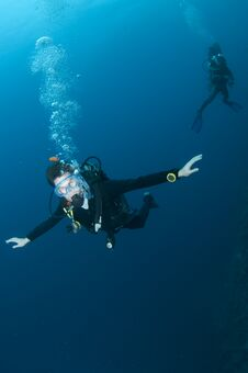 Free Scuba Diver Swimming In Clear Blue Water Royalty Free Stock Photos - 24110438