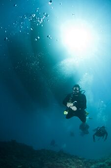Free Scuba Divers Over Coral Reef Royalty Free Stock Photos - 24110498