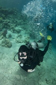 Free Scuba Divers Swim Over Coral Reef Royalty Free Stock Photo - 24110545