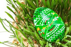 Free Easter Egg Royalty Free Stock Photography - 24118187