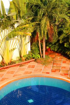 Free Swimming Pool Of The Luxury Resort Stock Photo - 24120550