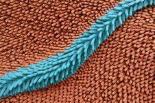 Microfiber Stock Photos