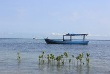 Free Beach Of Tidung Island Royalty Free Stock Image - 24132546