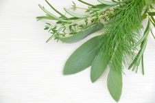 Culinary Herbal Leaves On The Board Royalty Free Stock Image