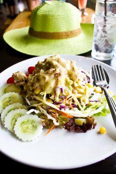Free Tuna Salad Stock Photos - 24149063