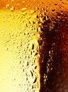 Free Golden Beer. Stock Image - 24152581