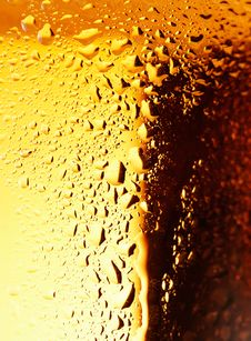 Free Golden Beer. Stock Image - 24152581