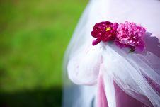 Free Peony Wedding Table Decor Royalty Free Stock Image - 24153526
