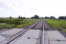 Free Railway Track Cross Road Between Fields And Forest Royalty Free Stock Photography - 24155867