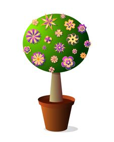 Free Creative Tree Stock Photos - 24172093