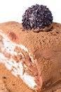 Free Chocolate Cake Stock Images - 24184524