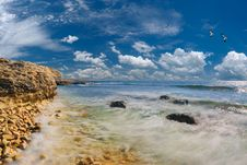Sea And Rocky Coast Royalty Free Stock Photography