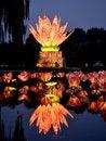 Free The Lotus Lamp7 Stock Photo - 24196910