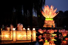 Free The Lotus Lamp2 Stock Photos - 24196713
