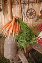 Free Old Canister With Carrots On T Stock Photo - 2424210